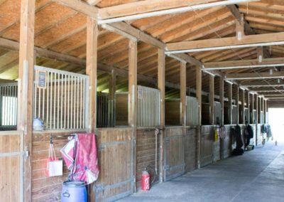 Les box dans le barn - Les Écuries du Vallon